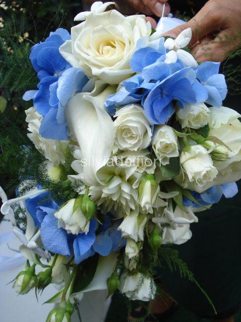 Ortensie Blu : Fiori blu silviadeifiori