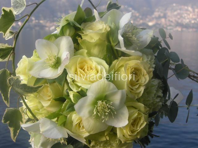 Fiori verdi silviadeifiori for Fiori verdi