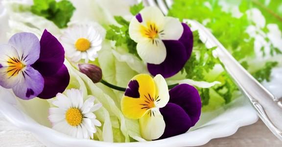 I fiori commestibili come li usano gli chef famosi for Fiori edibili