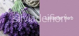matrimonio provenzale colori lavander harb