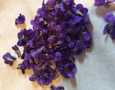 Ricette con violette