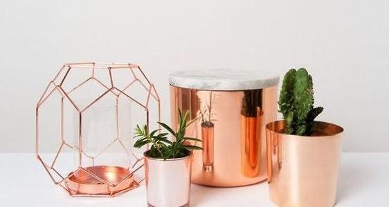 piante marble copper (1)