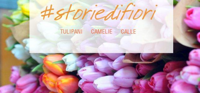 storie fiori tulipani calle camelie