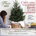 """Contest """"Creativita' a Natale"""" – Vinci un corso gratuito a scelta tra """"bozzetto"""" e """"creativity lab"""""""
