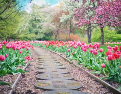 silviadeifiori-inlab-corsi-maggio